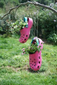 Old shoes make a fun hanging display.