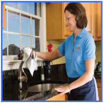 maid_cleaning_sink