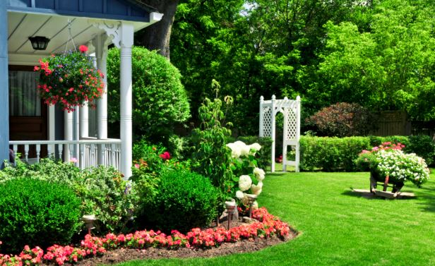 Keep Your Yard Looking Fabulous: 5 Ways To Maintain Your Yard