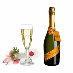5 Common Names For Champagne