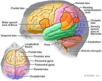 "6 Brain Tumor ""Risk Factors"" You Should Be Aware Of"