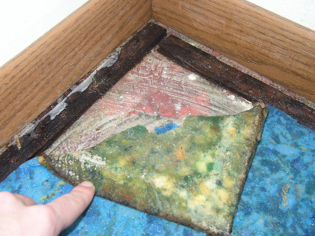 New Ways To Prevent Mold and Mildew