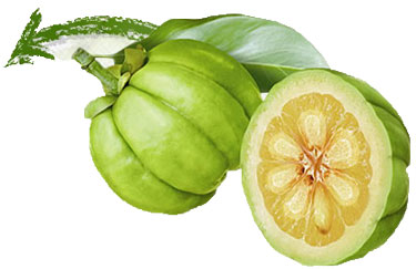Lose Weight With Garcinia – Gain A Confident And Beautiful Personality