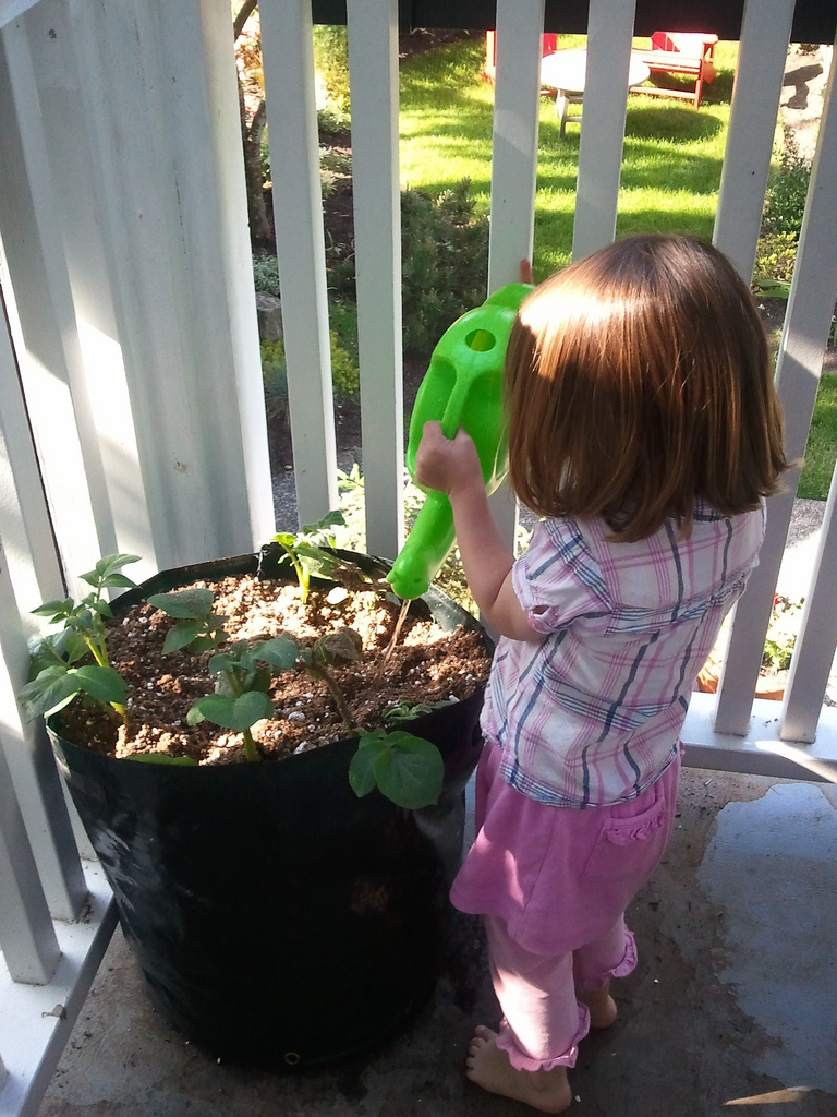 Best Tips For Teaching Your Kids How To Be Kind To The Environment