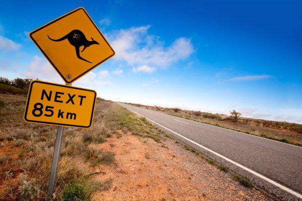 Top 8 Amazing Places To Visit Australia