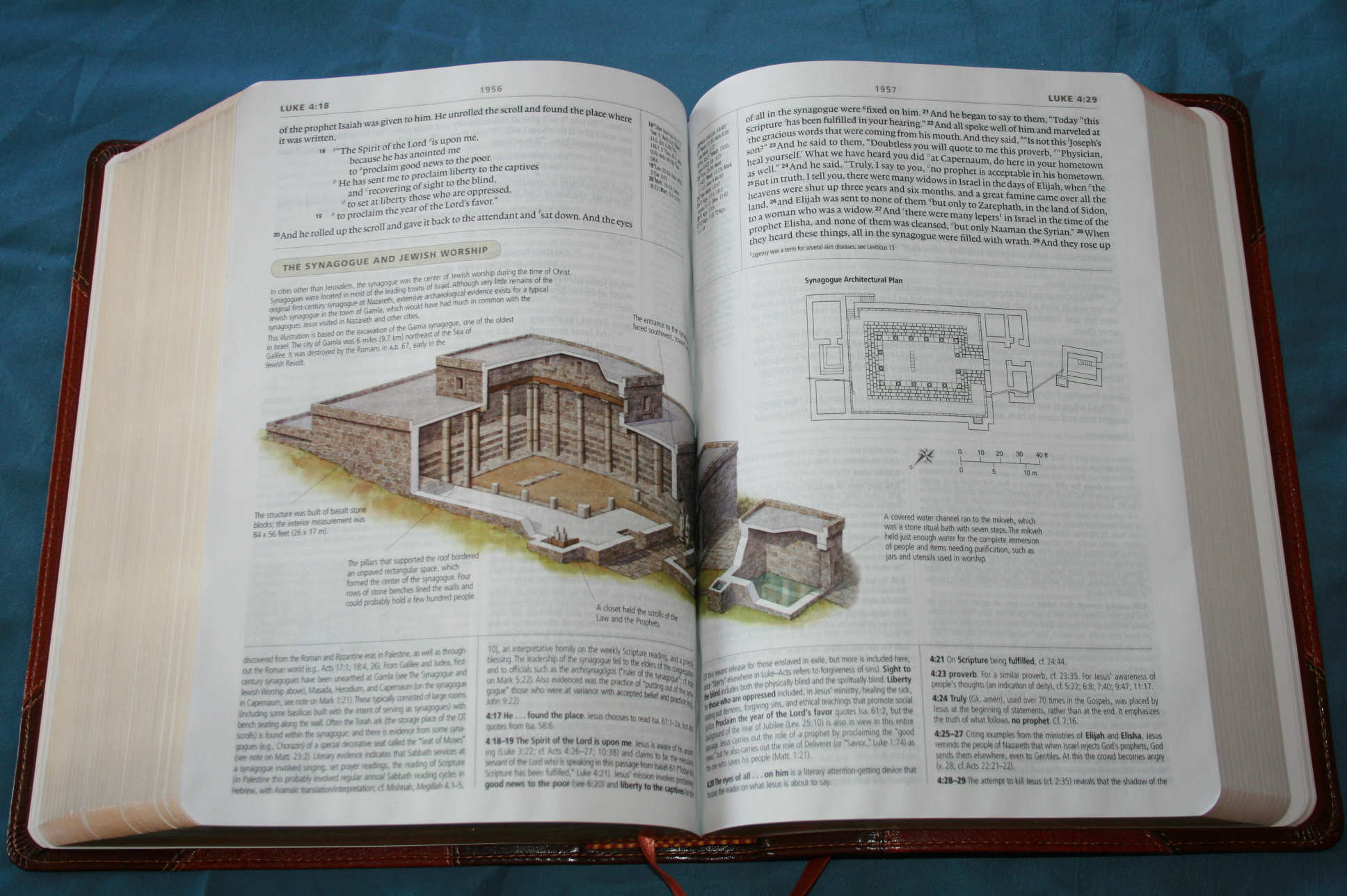 How To Choose Bibles For Personal Study and Presentation?