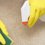 4 Tricks To Keep Your Carpet From Getting Dirty