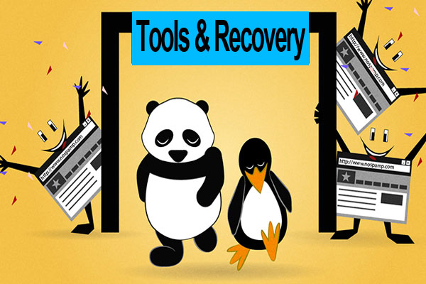 Recover Your Penalize Website By Following Simple Methods