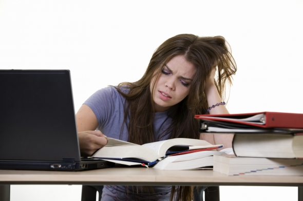 Personal Experience With Essay Writing Services