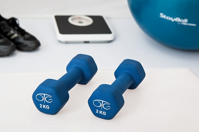 Beginners Guide To The Gym Workout Routine