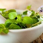 Kratom Leaves The Miracle Medicinal Healing Herbs