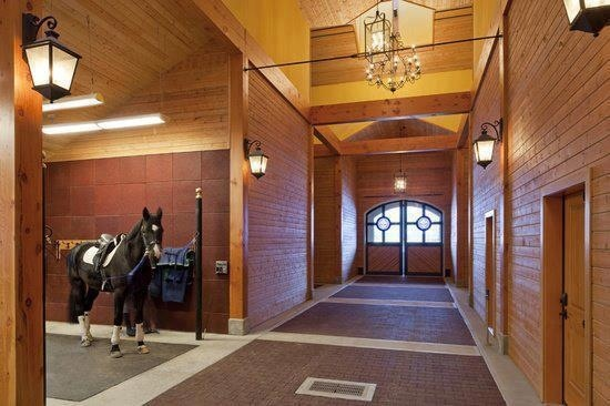 4 Reasons Why Good Quality Stables Make Horses Happier