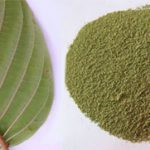 Green Vein Kratom - The Balanced Strain Because Of Its Energizing And Relaxing Effects