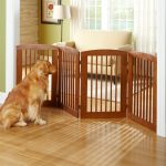 Dog Proofing A Home