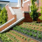 5 Ways Professional Landscaping Can Improve Your NJ Home