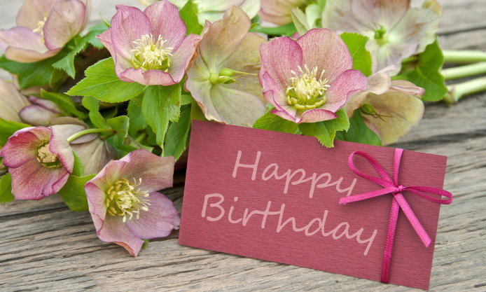5 Facts To Know While Presenting A Flower As A Birthday Gift