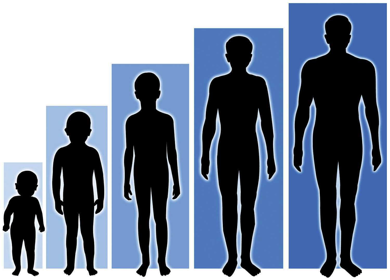 grow-tall1