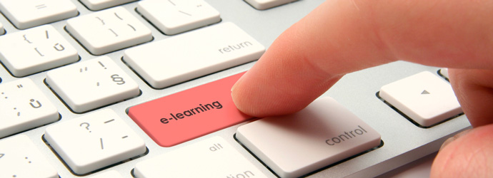 Flexible Online Learning – Offering Innumerable Advantages
