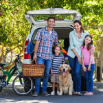 Best U.S. Road Trip Destinations For You and Your Four-legged Partner