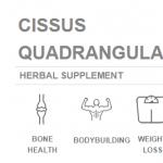 Learn More About Cissus Quadrangularis