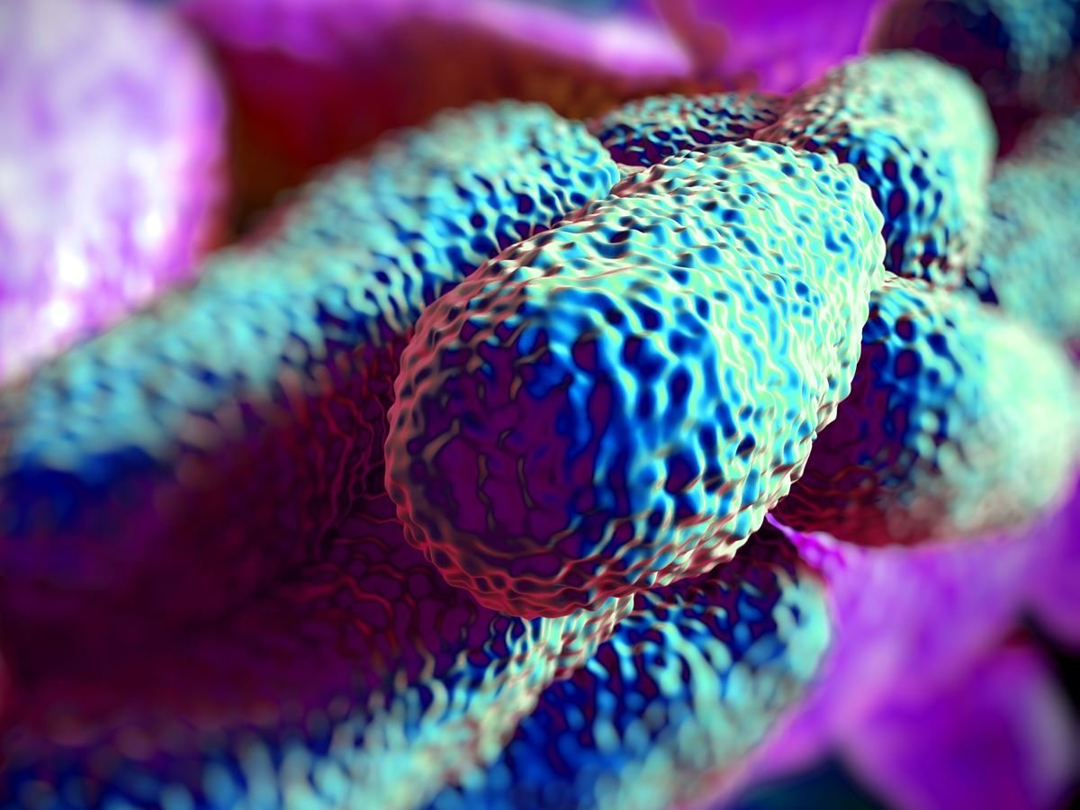 Better Safe Than Sorry – An Easy Way To Test Your Property For Legionella