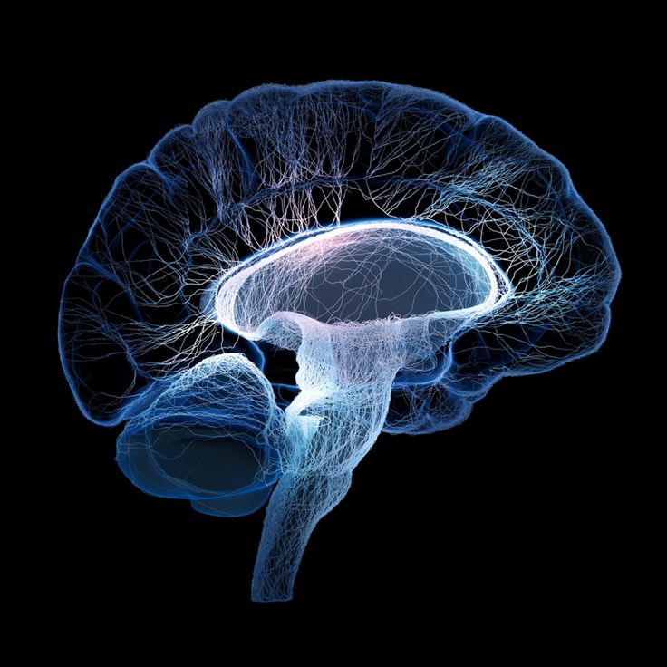 Rewiring Dysfunctional Brain Circuits With State-of-the-art Mechanisms and Approach