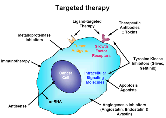 What Is Targeted Therapy For Cancer All About?
