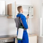 What Do The People Expect From The Pest Controllers