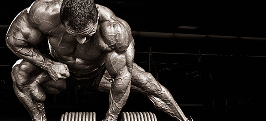 Be Aware Of The Benefits Of Legal Steroids