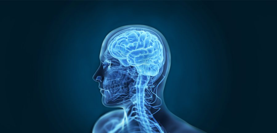 Finding A Neurosurgeon Based On Your Needs