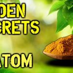Things You Don't Know About Kratom