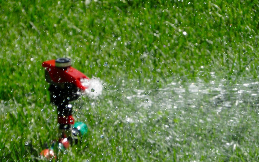 3 Things To Check Before Turning On Your Sprinkler System