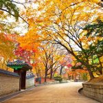 5 BEAUTIFUL COUNTRIES OF ASIA TO VISIT WITHOUT WAITING