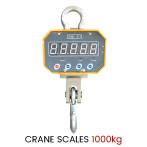 Types Of Crane Scales That You Should Consider Before Buying It