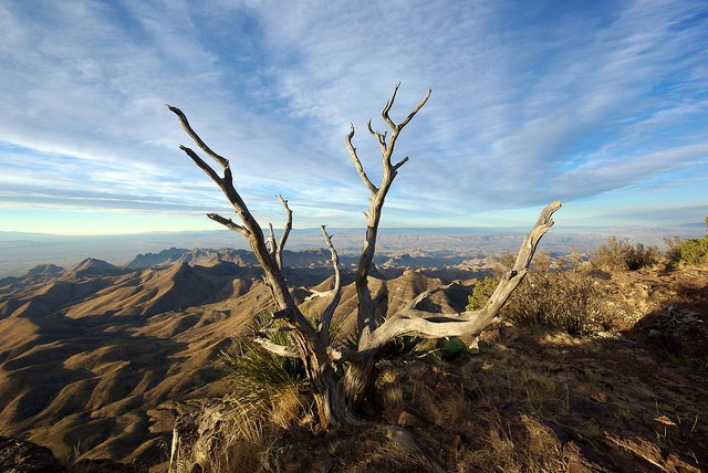 Sightseeing in Texas: 5 Most Amazing Spots to Visit