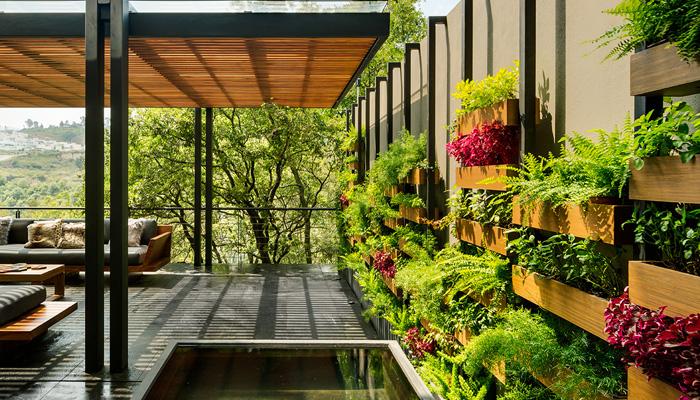 A mini garden